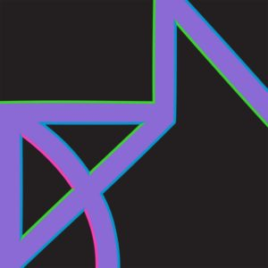 new_order_singularity_12inch