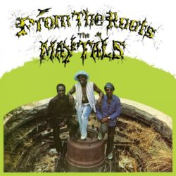 """The Maytals """"From The Roots"""" (Music On Vinyl)"""