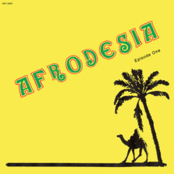 """Afrodesia """"Episode One"""" (Best Record)"""