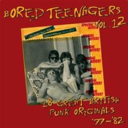 "Various Artists ""Bored Teenagers Vol. 12"" (Bin Liner)"