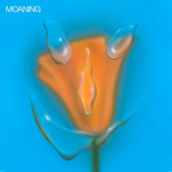 """Moaning """"Uneasy Laughter"""" (Sub Pop)"""